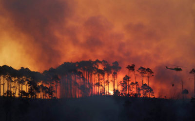 Lowveld aerial resources deployed to Southern and Eastern Cape Fires